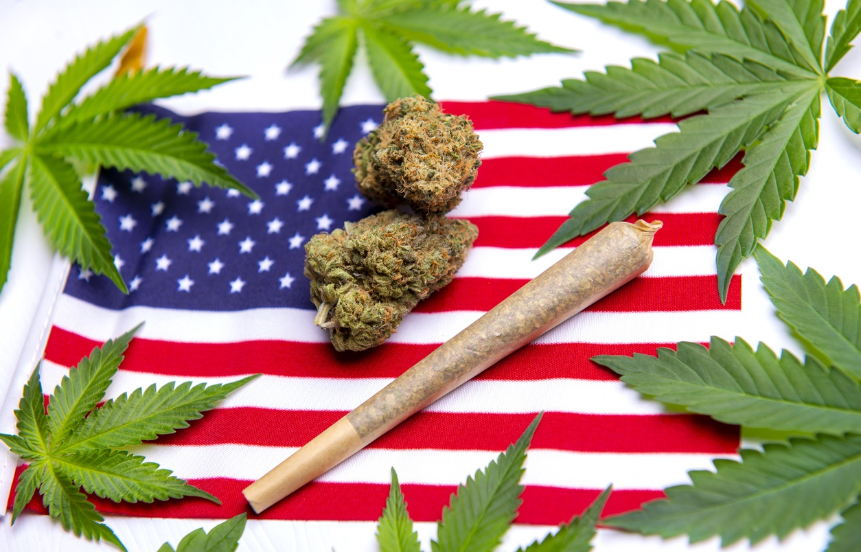 Congresswoman Previews Hemp Bill To Ease Regulatory Restrictions And End Felony Ban For Licensees
